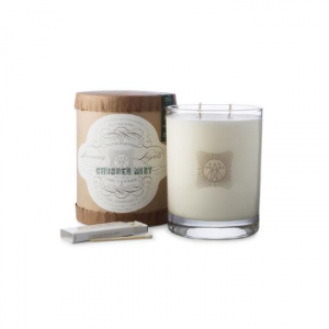 LINNEA'S LIGHTS CRUSHED MINT 2-WICK CANDLE