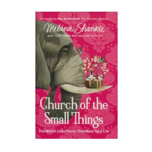MELANIE SHANKLE CHURCH OF THE SMALL THINGS