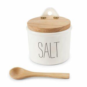 MUDPIE BISTRO SALT CELLAR AND SPOON SET