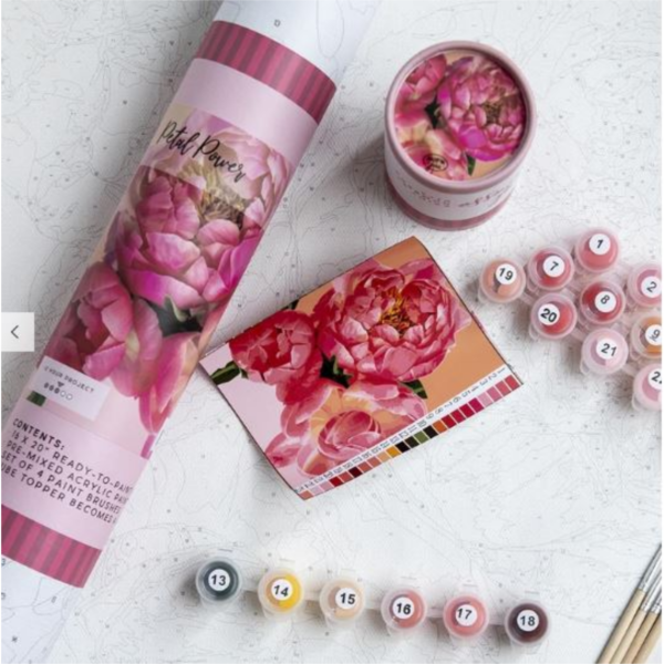 PINK PICASSO KITS PAINT BY NUMBER