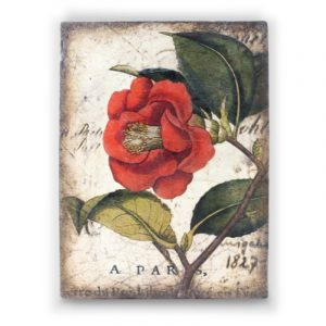 SID DICKENS RED CAMELLIA BLOCK