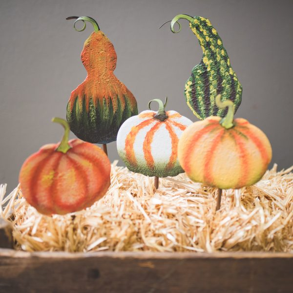 SMALL FALL IMPRESSION GOURDS