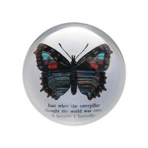 SUGARBOO BUTTERFLY PAPERWEIGHT