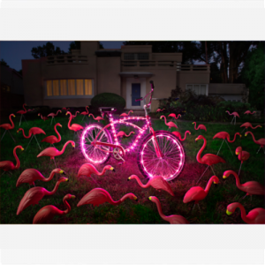 BIKE LIGHTS COMBO - PINK