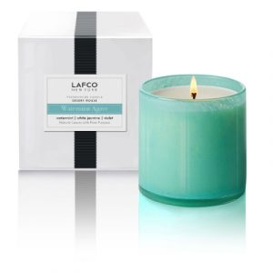 LAFCO WATERMINT AGAVE DESERT HOUSE CANDLE