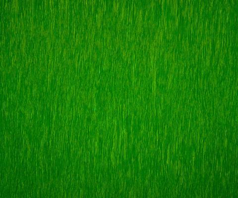 LIME GREEN PEASANT MAT