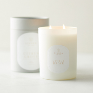 LINNEA'S LIGHTS CITRUS GROVE 2 WICK CANDLE