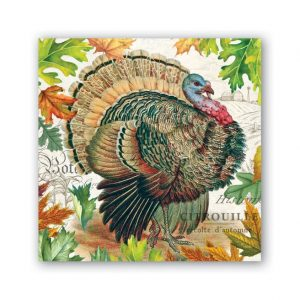 MICHEL DESIGN WORKS FALL HARVEST TURKEY COCKTAIL NAPKINS