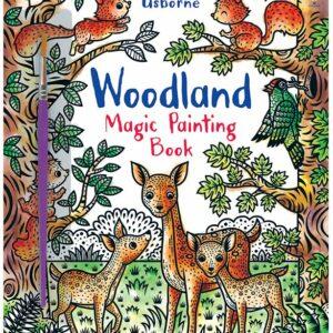 USBORNE WOODLAND MAGIC PAINTING